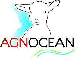 logo-agnocean